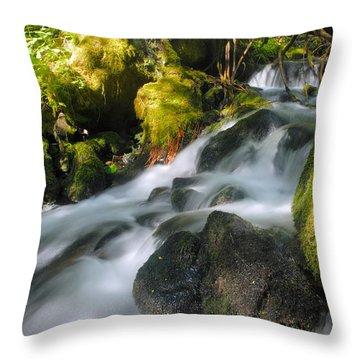 Hanson Falls Throw Pillow by Larry Ricker