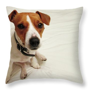Happiness Is A Cute Puppy Throw Pillow