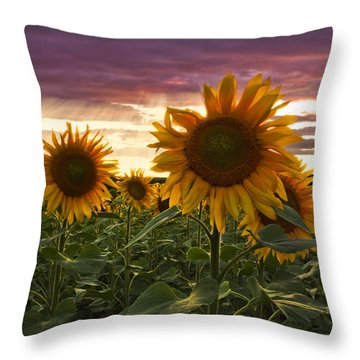 Happiness Is A Field Of Sunflowers Throw Pillow by Debra and Dave Vanderlaan
