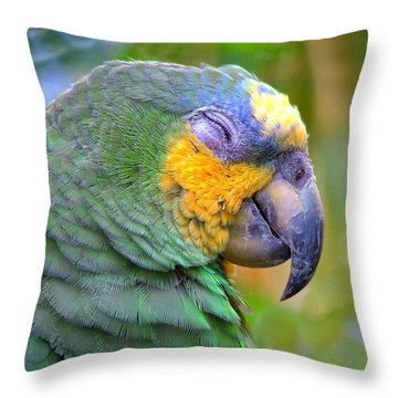 Throw Pillow featuring the photograph Happy 2 by Wendy McKennon