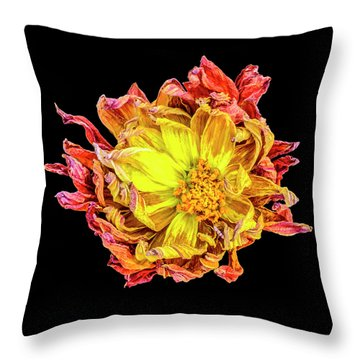 Happy After Life 1 Throw Pillow