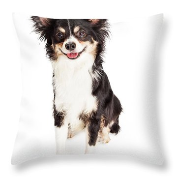 Happy Chihuahua Mixed Breed Dog Sitting Throw Pillow