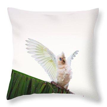 Happy Corella 1 Throw Pillow