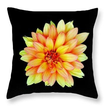 Happy Dahlia Throw Pillow