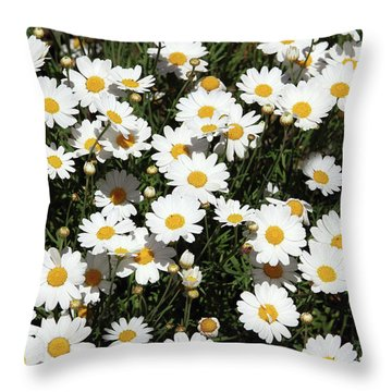 Happy Daisies- Photography By Linda Woods Throw Pillow