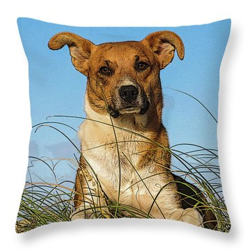 Happy Dog At The Beach Throw Pillow