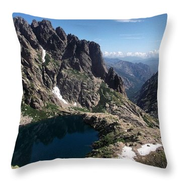 Happy Earth Day Y'all!! Not Just Today Throw Pillow
