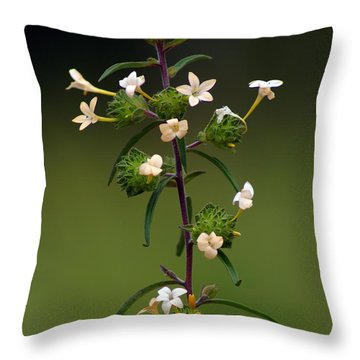 Throw Pillow featuring the photograph Happy Flowers by Ben Upham III