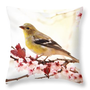 Happy Goldfinch Throw Pillow