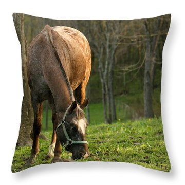 Throw Pillow featuring the photograph Happy Grazing by Angela Rath