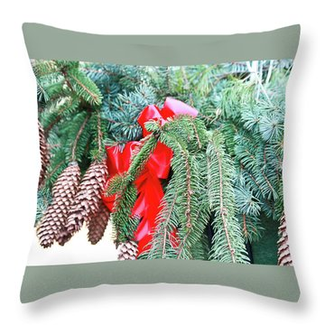 Throw Pillow featuring the photograph Happy Holidays by Ann Murphy