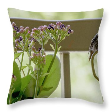 Happy Hummer Throw Pillow by Anne Rodkin