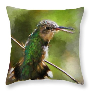 Happy Hummingbird Throw Pillow