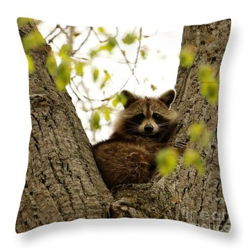 Happy In Her Hideout Throw Pillow