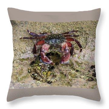 Happy Little Crab Throw Pillow