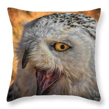 Happy Owl Throw Pillow by Mitch Shindelbower
