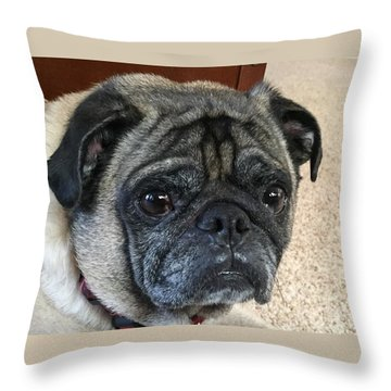 Happy Pug Throw Pillow by Russell Keating