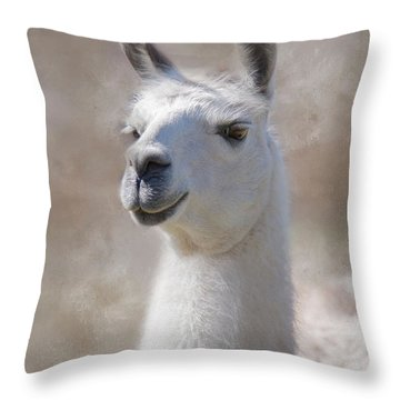 Happy Throw Pillow by Robin-Lee Vieira