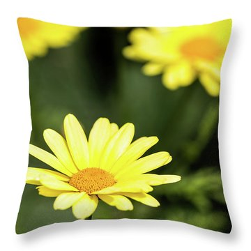 Happy Summer Flowers Throw Pillow