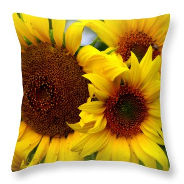 Throw Pillow featuring the photograph Happy Sunflowers by Kay Novy