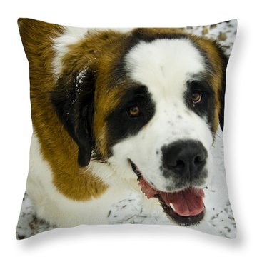 Happy Tank Throw Pillow