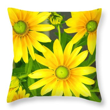 Happy Yellow Summer Cone Flowers In The Garden Throw Pillow by Amy McDaniel