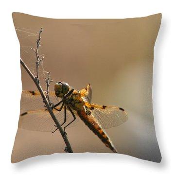 Harbinger Of Luck Throw Pillow