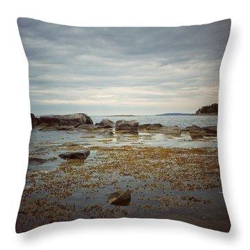 Harbor Throw Pillow by Karen Stahlros