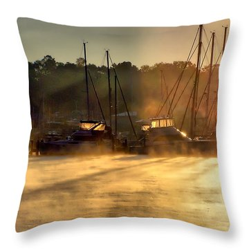 Throw Pillow featuring the photograph Harbor Mist by Brian Wallace