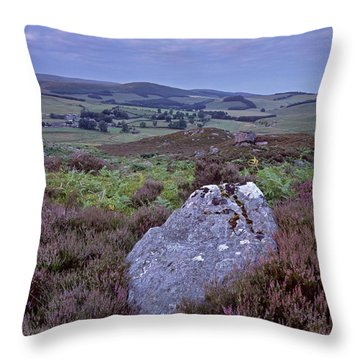 Harbottle Heather Throw Pillow