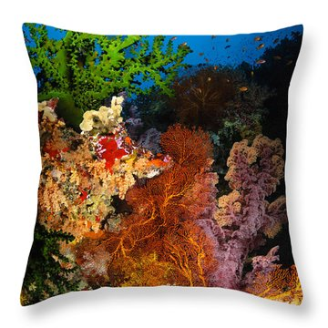 Hard Coral And Soft Coral Seascape Throw Pillow by Todd Winner