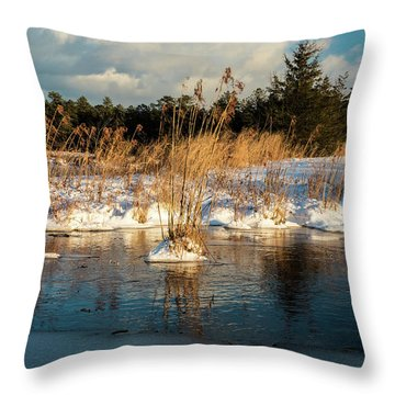 Throw Pillow featuring the photograph Hard Frosts And Icy Drafts by Louis Dallara