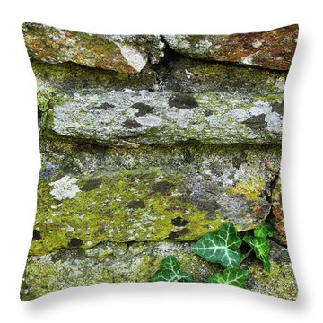 Hard Life Throw Pillow by Eena Bo