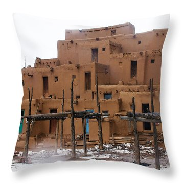 Hard Winter Throw Pillow by Terry Fiala