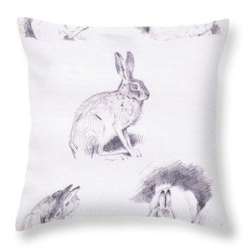 Hare Studies Throw Pillow by Archibald Thorburn