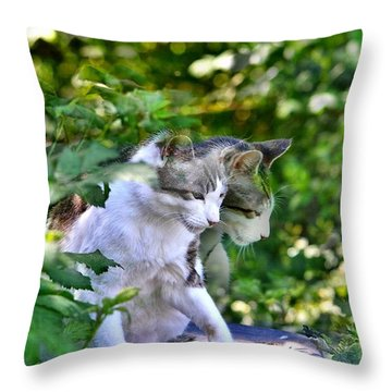 Throw Pillow featuring the photograph Harlequin Cat Twins by Chriss Pagani