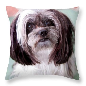 Harley Throw Pillow by Cherie Duran
