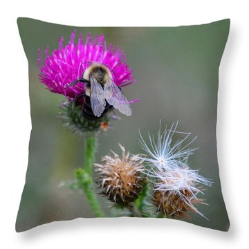 Harmony Throw Pillow by Cindy Manero