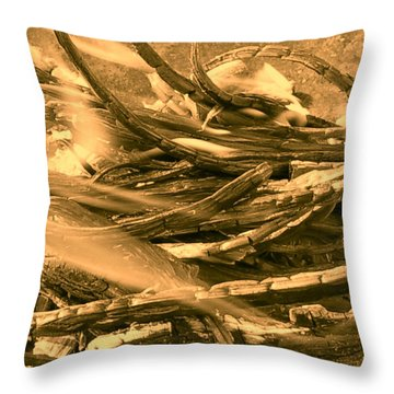 Harmony I I I Throw Pillow