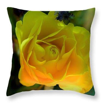 Harmony  Throw Pillow by Ramabhadran Thirupattur