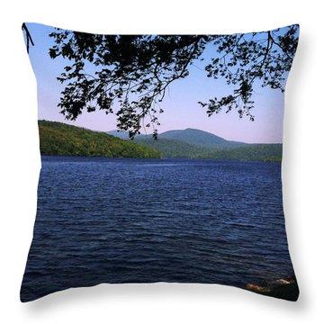 Harriman Throw Pillow by GJ Blackman