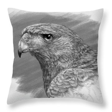 Harris Hawk Drawing Throw Pillow
