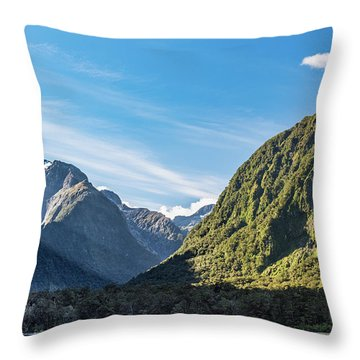 Throw Pillow featuring the photograph Harrison Cove Sunlight by Gary Eason