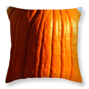 Harvest Throw Pillow by Amanda Barcon
