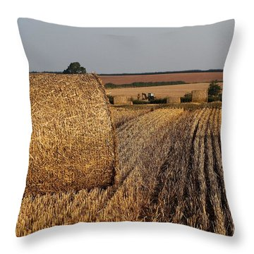 Throw Pillow featuring the photograph Harvest by Gary Bridger