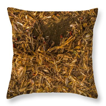 Harvest Leftovers Throw Pillow