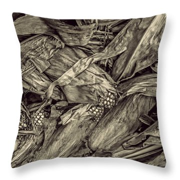 Harvest Throw Pillow by Pat Cook