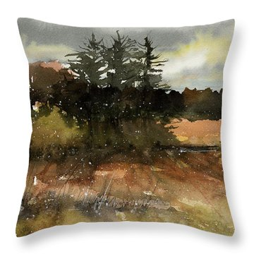 Harvest Snow Throw Pillow