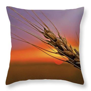 Harvest Sunset Throw Pillow