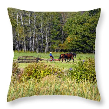 Harvest Time Throw Pillow by David Lee Thompson